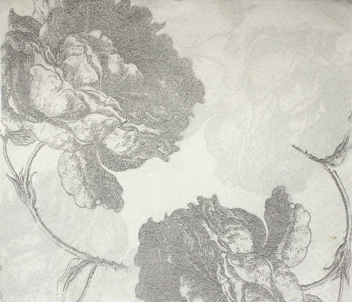 TylerGraphic - Rose du Roi Graphite